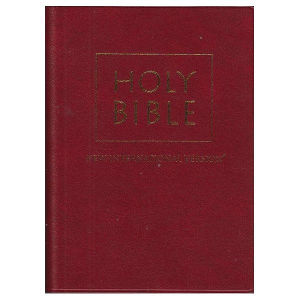 Holy Bible New International Version